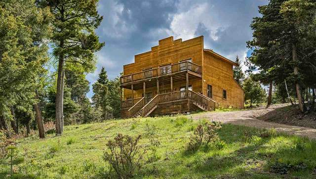 224 Taos Pines Ranch Road, Angel Fire, NM 87710 (MLS #104866) :: The Chisum Realty Group