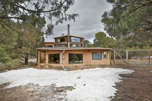 265 Gallina Canyon Road, Valdez, NM 87580 (MLS #104881) :: The Chisum Realty Group