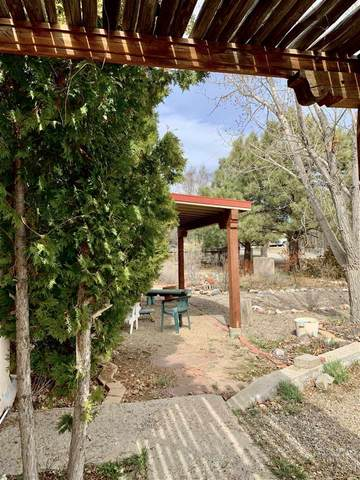 732 Zuni Street, Taos, NM 87571 (MLS #104888) :: Page Sullivan Group | Coldwell Banker Mountain Properties