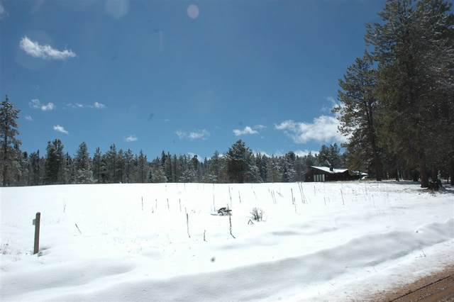 646 Martinez Way, Angel Fire, NM 87710 (MLS #104900) :: Angel Fire Real Estate & Land Co.