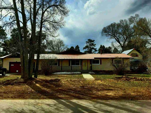 177 Pine Street, CHAMA, NM 87520 (MLS #104918) :: The Chisum Realty Group