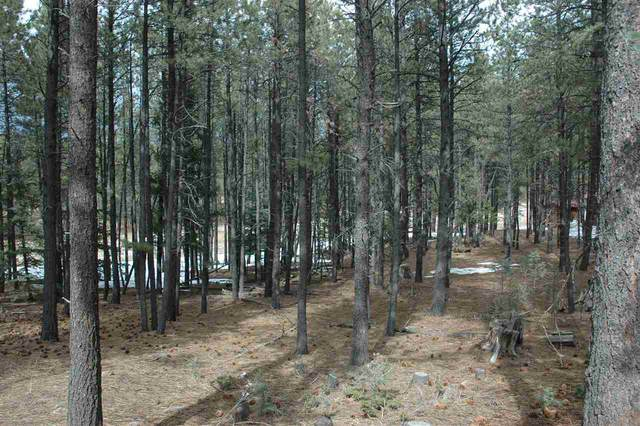610 Via Del Rey, Angel Fire, NM 87710 (MLS #104930) :: Page Sullivan Group