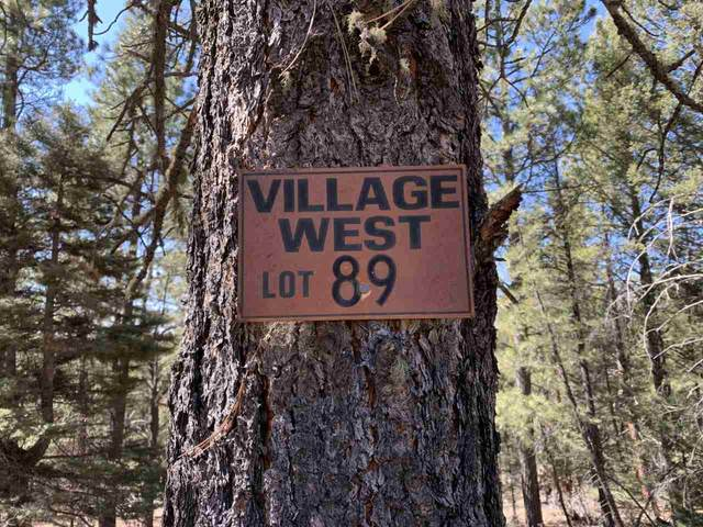 lot 89 San Juan Dr, Angel Fire, NM 87710 (MLS #104936) :: The Chisum Realty Group