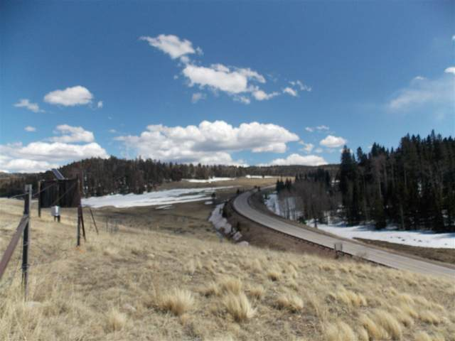 Highway 38, Red River, NM 87558 (MLS #104941) :: Page Sullivan Group