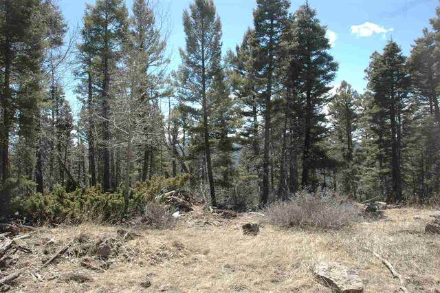 1177 Cheerful Overlook, Angel Fire, NM 87710 (MLS #104961) :: Page Sullivan Group