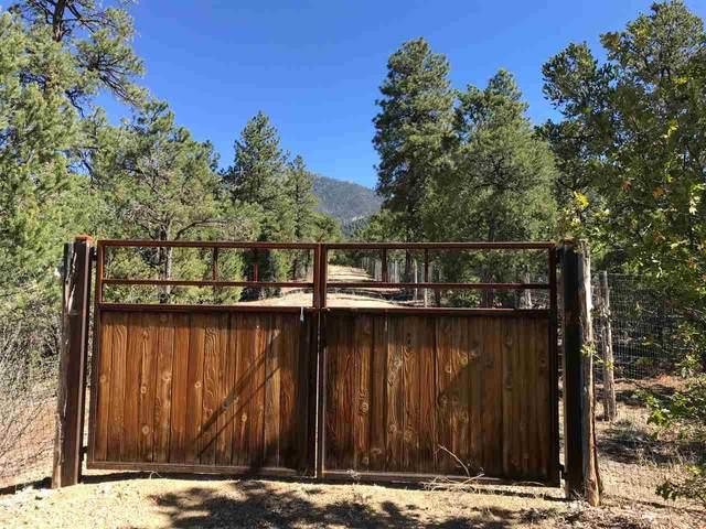 Parcel 16 Deer Mesa Road, Taos, NM 87571 (MLS #104965) :: Page Sullivan Group