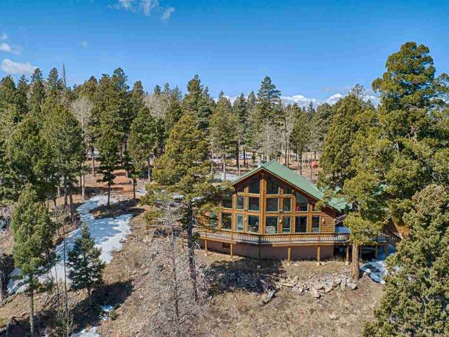138 Blue Grouse Ct, Angel Fire, NM 87710 (MLS #104969) :: Page Sullivan Group