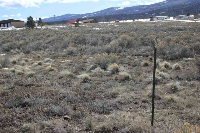 Lot 7 Touch Me Not Estates, Angel Fire, NM 87710 (MLS #104973) :: Angel Fire Real Estate & Land Co.