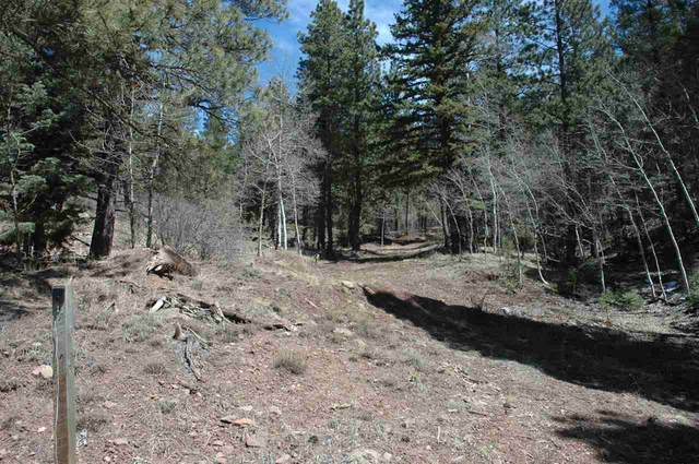 95 Back Basin Rd, Angel Fire, NM 87710 (MLS #104996) :: The Chisum Realty Group
