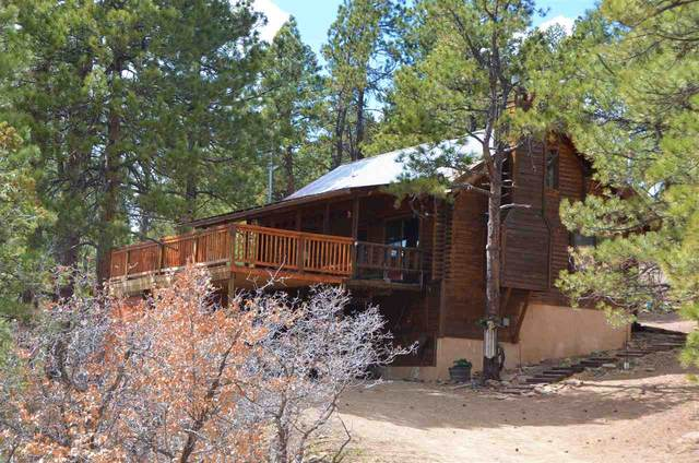 33 Upper Road, Angel Fire, NM 87710 (MLS #104999) :: Angel Fire Real Estate & Land Co.