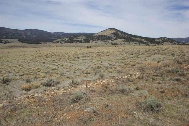Eagle Nest, NM 87718 :: The Chisum Realty Group