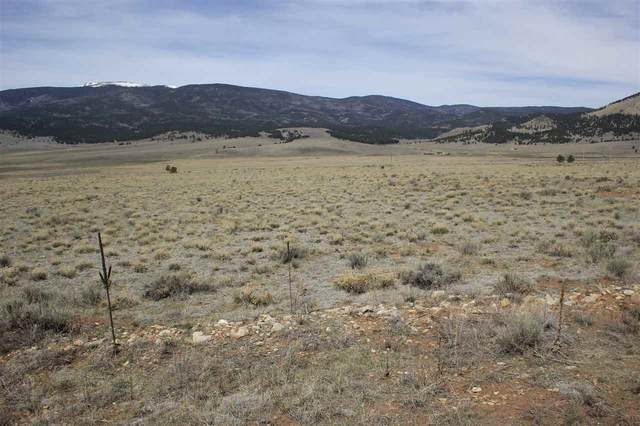 Lot 59 Soaring Eagle, Eagle Nest, NM 87718 (MLS #105005) :: The Chisum Realty Group