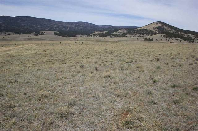 Lot 61 Valley View Drive, Eagle Nest, NM 87718 (MLS #105007) :: The Chisum Realty Group