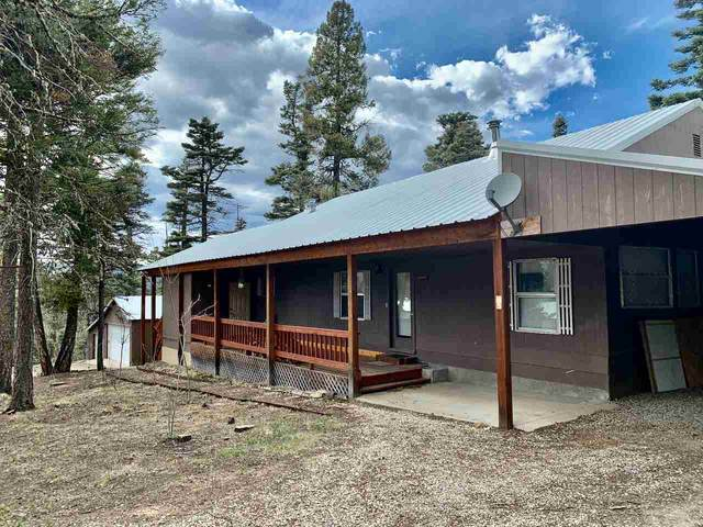 79 Cintas Avenue, Angel Fire, NM 87710 (MLS #105016) :: The Chisum Realty Group