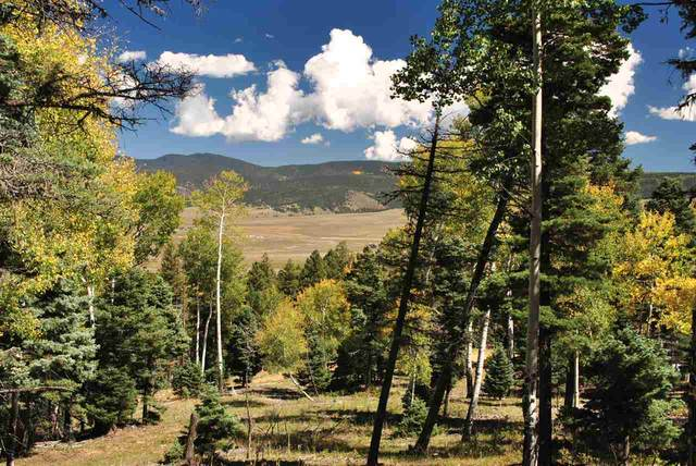 Lot 32 Taos Pines Ranch Road, Angel Fire, NM 87710 (MLS #105046) :: The Chisum Realty Group