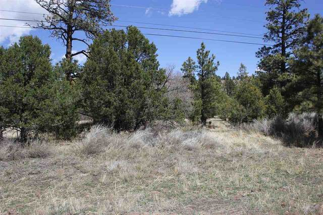 Lot 2 Hwy 64, Ute Park, NM 87749 (MLS #105056) :: The Chisum Realty Group
