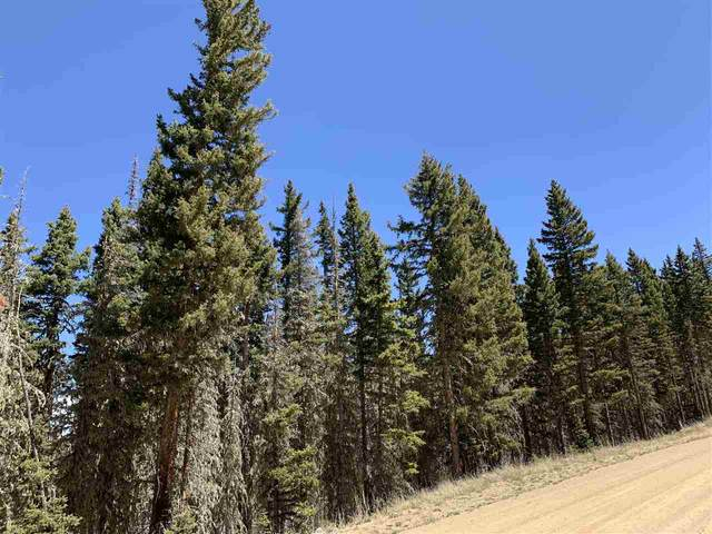 Lot 34 Happy Way, Angel Fire, NM 87710 (MLS #105076) :: Angel Fire Real Estate & Land Co.
