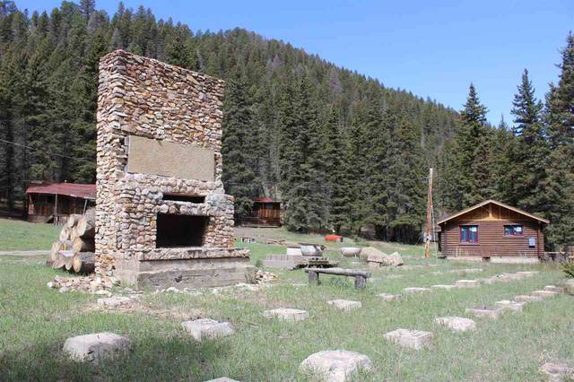 2149 Hwy 578, Red River, NM 87558 (MLS #105082) :: The Chisum Realty Group