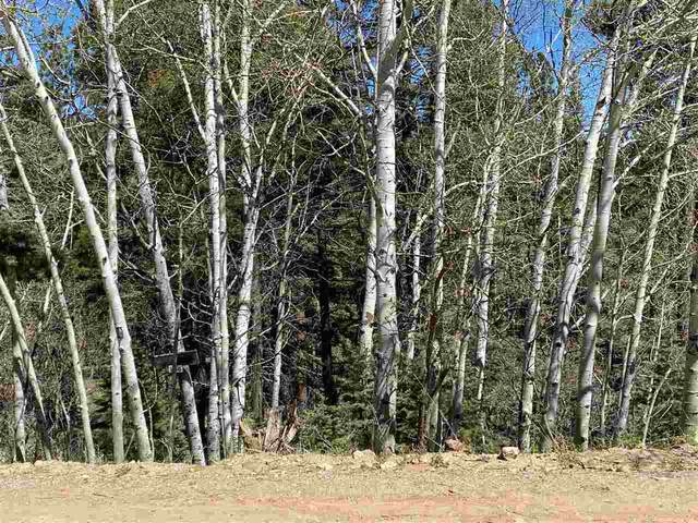204 Taos Drive, Angel Fire, NM 87710 (MLS #105083) :: Angel Fire Real Estate & Land Co.