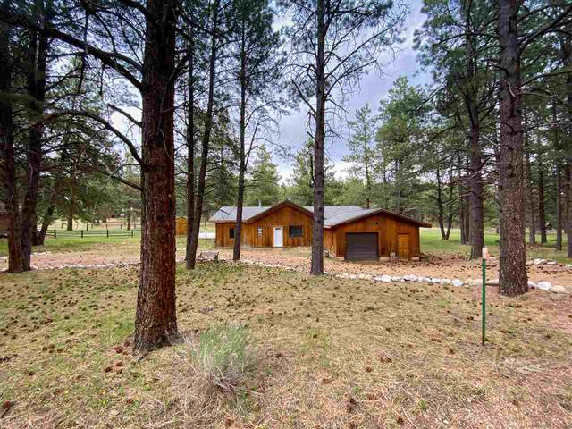 86 Conchas Drive, Angel Fire, NM 87710 (MLS #105106) :: Page Sullivan Group