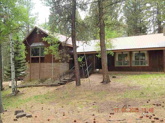 25 Mountain Lake Way, Angel Fire, NM 87710 (MLS #105113) :: The Chisum Realty Group