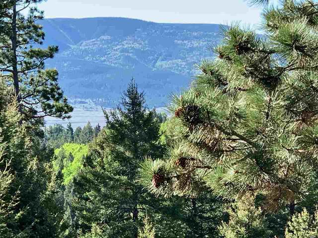 Lot 96AB Palo Flechado Ridge Road, Angel Fire, NM 87710 (MLS #105120) :: The Chisum Realty Group