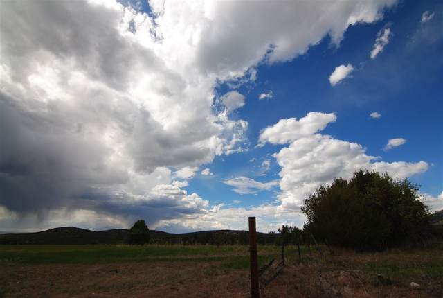 Rim Road, Arroyo Seco, NM 87514 (MLS #105154) :: Page Sullivan Group