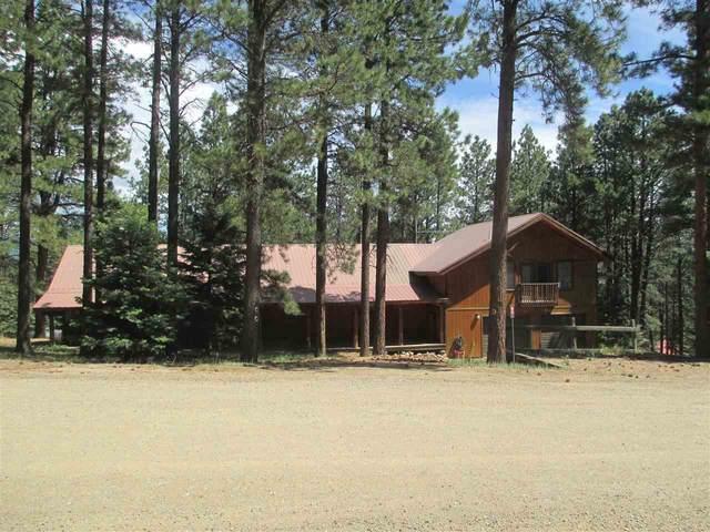 80 N Valle Grande, Angel Fire, NM 87710 (MLS #105160) :: Page Sullivan Group