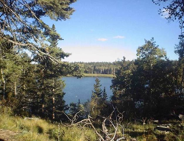 Lot 59 AB Hidden Lake Circle, Angel Fire, NM 87710 (MLS #105164) :: Angel Fire Real Estate & Land Co.