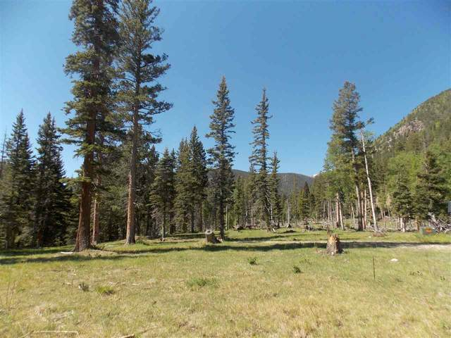 Highway 578, Red River, NM 87558 (MLS #105170) :: The Chisum Realty Group
