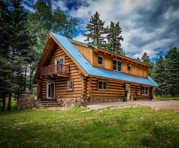 53 Forest Road 76, Angel Fire, NM 87710 (MLS #105186) :: The Chisum Realty Group