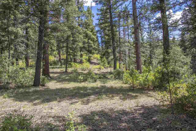 TBD E Us Hwy 64, Taos, NM 87571 (MLS #105215) :: Angel Fire Real Estate & Land Co.