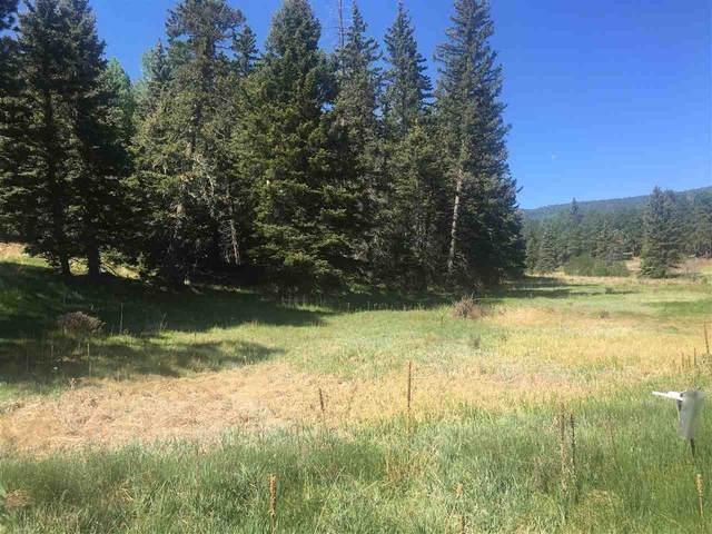 Lot 7 Alpine Lake Way, Angel Fire, NM 87710 (MLS #105232) :: Page Sullivan Group