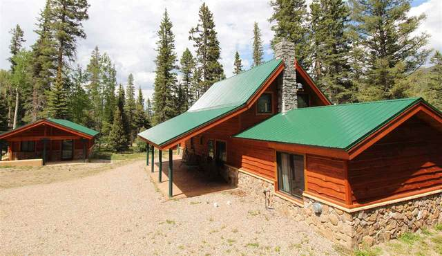 562 Highway 578, Red River, NM 87558 (MLS #105233) :: The Chisum Realty Group