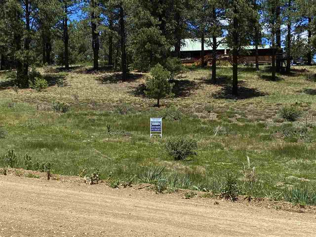 Lot 46 Blue Spruce, Taos, NM 87571 (MLS #105243) :: Angel Fire Real Estate & Land Co.