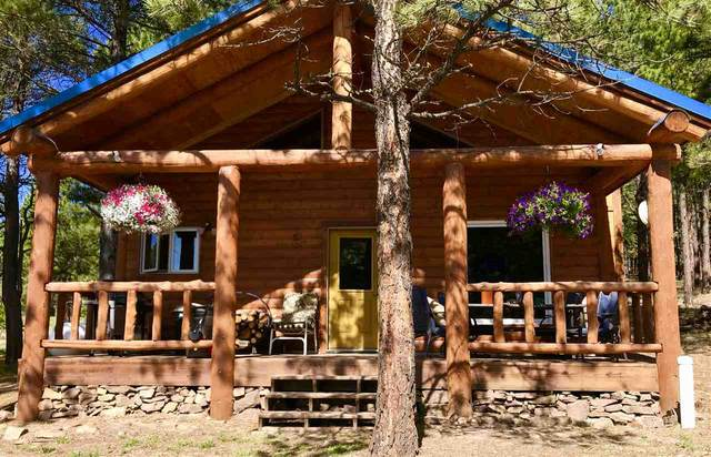 58 Pam Coleman, Angel Fire, NM 87710 (MLS #105257) :: Page Sullivan Group