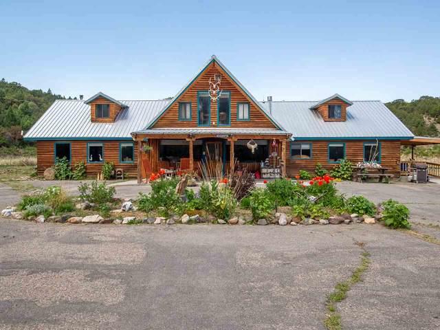 746 Sh 196, Amalia, NM 87512 (MLS #105261) :: Angel Fire Real Estate & Land Co.