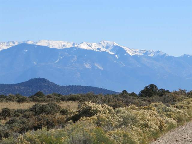 Lot 15 Off Chile Line Rd, Tres Piedras, NM 87529 (MLS #105273) :: Page Sullivan Group
