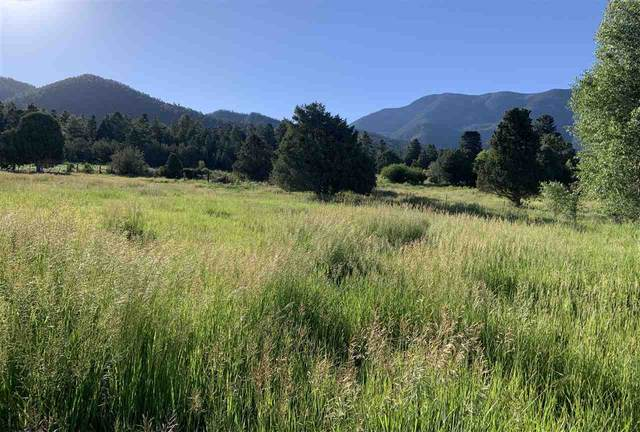 Tract A 5D Calle Coyote, Arroyo Seco, NM 87514 (MLS #105277) :: Page Sullivan Group