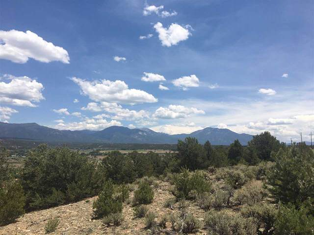 1 pt 4 miles Acequia Madre Del Llano B006, Arroyo Hondo, NM 87513 (MLS #105282) :: Angel Fire Real Estate & Land Co.
