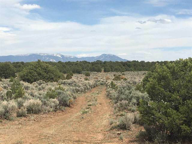 MM372 to 373 Hwy 285, Tres Piedras, NM 87577 (MLS #105283) :: The Chisum Realty Group