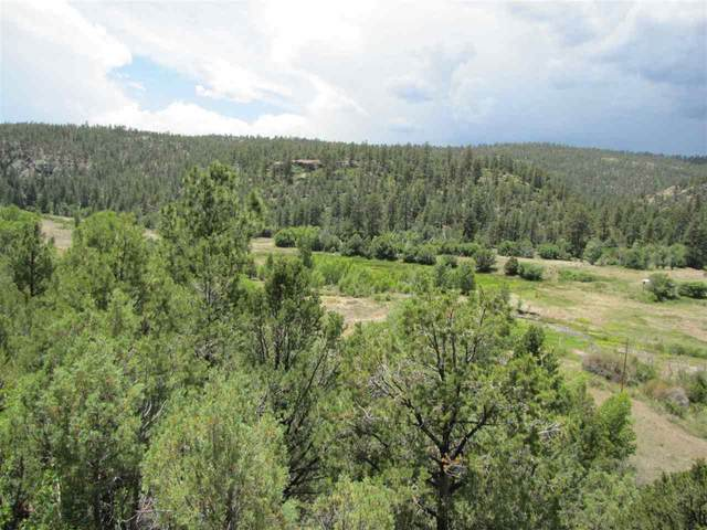 47 Acres Nm 518, Vallecitos, NM 87581 (MLS #105288) :: The Chisum Realty Group