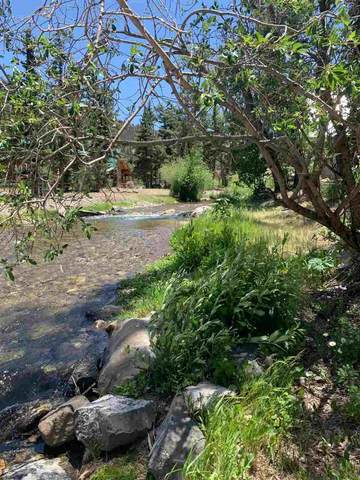 Dorris Gene Trail, Red River, NM 87558 (MLS #105309) :: Angel Fire Real Estate & Land Co.