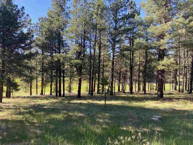Lot 1134 Spyglass Hll Rd, Angel Fire, NM 87710 (MLS #105311) :: Angel Fire Real Estate & Land Co.