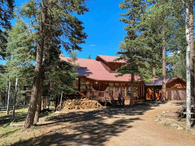 14 Rio Grande Terrace, Angel Fire, NM 87710 (MLS #105316) :: Angel Fire Real Estate & Land Co.
