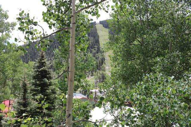 15 Twining Road 2D, Taos Ski Valley, NM 87525 (MLS #105330) :: Page Sullivan Group