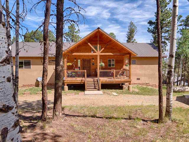 47 Camino Real, Angel Fire, NM 87710 (MLS #105332) :: The Chisum Realty Group