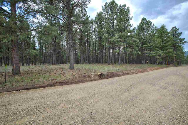 Lot 1 Block 2 Halo Pines Terrace, Angel Fire, NM 87710 (MLS #105345) :: Page Sullivan Group