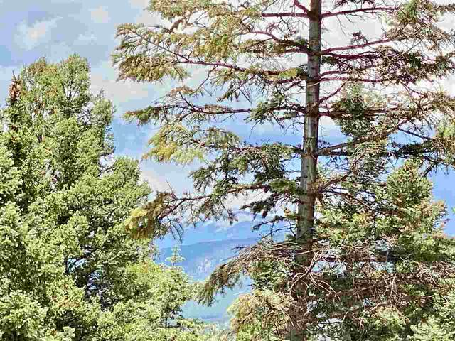 501A Vail Loop, Angel Fire, NM 87710 (MLS #105347) :: Angel Fire Real Estate & Land Co.