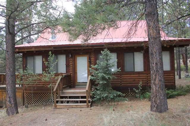 17 Upper Rd, Angel Fire, NM 87710 (MLS #105351) :: The Chisum Realty Group